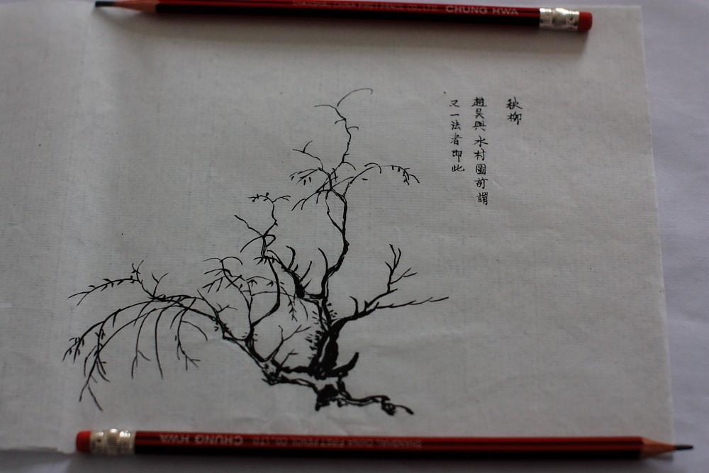 桃树画法图片
